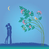 Camminata notturna di caduta nell'amore Fotografia Stock Libera da Diritti
