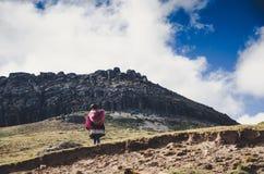 Camminata peruviana sola della donna Fotografia Stock