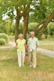 Camminata senior felice delle coppie Immagine Stock