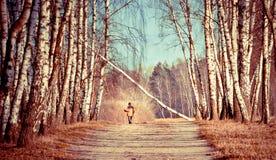 Camminata sola Fotografie Stock Libere da Diritti