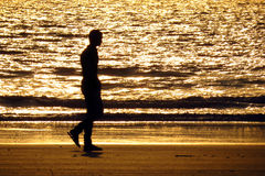 Camminata sola Fotografie Stock