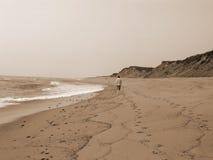 Camminata solitaria nella seppia Fotografie Stock Libere da Diritti