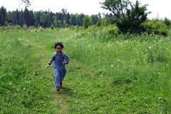 Camminata su un prato. immagine stock