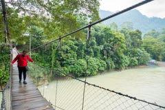 Camminata turistica maschio sul ponte sospeso nel fiume di Tangkahan, dentro Fotografie Stock Libere da Diritti