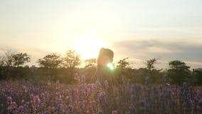 Camminata vaga della bambina all'aperto al tramonto archivi video