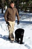 Camminatore del cane Immagine Stock