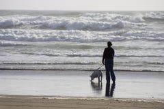 Camminatore del cane della spiaggia Immagine Stock Libera da Diritti