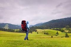 Camminatore della collina che cammina in mezzo alla regione selvaggia di montagna immagini stock libere da diritti