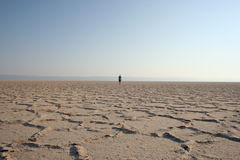 Camminatore nel deserto (2) Immagini Stock