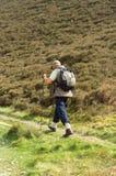 Camminatore, turista, livello scozzese Fotografia Stock Libera da Diritti