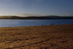 Camminatori del cane sulla spiaggia di Exmouth nell'inverno fotografie stock