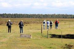 Camminatori nordici a Falsterbo, Svezia meridionale Immagini Stock Libere da Diritti