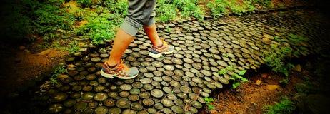 Cammini sulla strada pavimentata con i pali di legno Immagini Stock Libere da Diritti