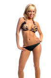 Camo Bikini-Blondine Lizenzfreie Stockbilder