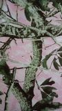 Camo. Fabric pink flauge blacket stock photos