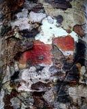 Camoflage colorido Fotografía de archivo libre de regalías