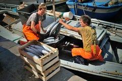 Camogli, Liguria, Italia - 15 de junio de 2015: Fishermans con una captura Imagen de archivo libre de regalías