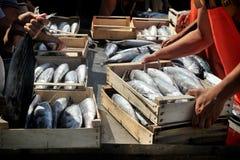 Camogli, Liguria, Italia - 15 giugno 2015: Fishermans con un fermo Immagini Stock