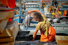Camogli, Liguria, Italy - June 15, 2015 Fishermans with a catch royalty free stock photo