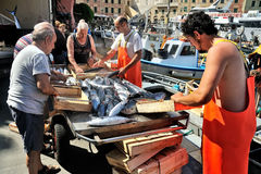 Camogli, Liguria, Italy - June 15, 2015: Fishermans with a catch Stock Photo