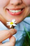 Camomila de sorriso da flor da terra arrendada da mulher do Close-up Fotografia de Stock Royalty Free