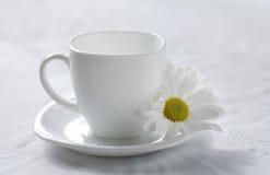 Camomila do chá Fotografia de Stock
