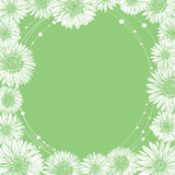 Camomila floral da borda do molde do quadro ilustração stock