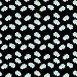 Camomila ou Daisy Seamless Vetora Pattern ilustração royalty free