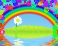 Camomila sob um arco-íris ilustração royalty free