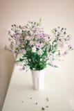 Camomila Wildflowers em um vidro Foto de Stock