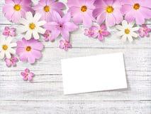 Camomilas cor-de-rosa em um fundo riscado das placas foto de stock royalty free