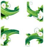 Camomilas e folha densa ilustração royalty free