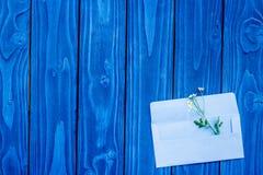 Camomile και οι φάκελοι για το καλοκαίρι σχεδιάζουν στο μπλε ξύλινο υπόβαθρο γραφείων το τοπ διάστημα άποψης για το κείμενο Στοκ Φωτογραφίες