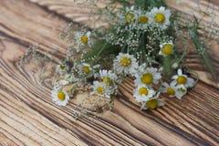 Camomile κινηματογράφηση σε πρώτο πλάνο ανθοδεσμών λουλουδιών gypsophila σε ένα ξύλινο υπόβαθρο σανίδων Στοκ Εικόνα