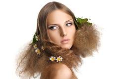 camomile ομορφιάς φύλλα τριχώματ&omic Στοκ φωτογραφίες με δικαίωμα ελεύθερης χρήσης