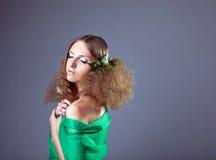 camomile ομορφιάς φύλλα τριχώματ&omic Στοκ εικόνα με δικαίωμα ελεύθερης χρήσης