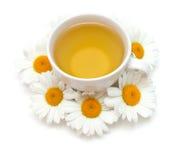 Camomile τσάι που απομονώνεται στο λευκό Στοκ Φωτογραφία