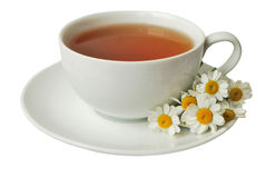 camomile τσάι Στοκ εικόνες με δικαίωμα ελεύθερης χρήσης