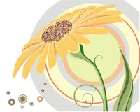 Camomile. Flower drew  in CorelDraw retro style Stock Photography