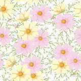Camomile. Floral seamless background. Camomile vintage pattern for scrap booking royalty free illustration