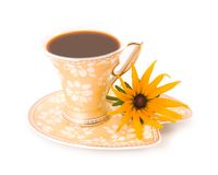 Camomile and beautiful cup from coffee. Flower yellow camomile and cup beautiful ceramic from coffee on white background Stock Photography