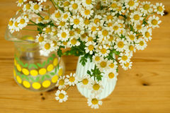 Camomile bouquet on a table Royalty Free Stock Images