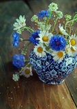 Camomile and cornflowers Stock Photo