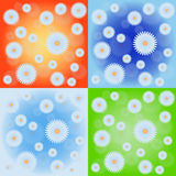 Camomile field four pattern set. In different colors Royalty Free Stock Photo