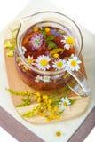 camomile floral βοτανικό τσάι Στοκ Φωτογραφίες