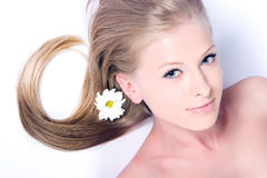 Camomile flower and girl Stock Photo