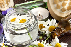 Camomile flowers essence for spa treatments Stock Images