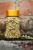 Camomile flowers in glass jar Royalty Free Stock Photos