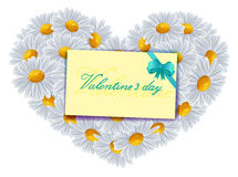 Camomile flowers in a heart. Congratulations on Valentine's Day. Letter Royalty Free Stock Photography