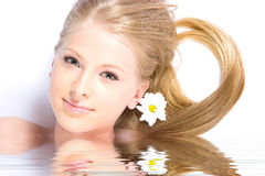 Camomile girl reflection in water Royalty Free Stock Images